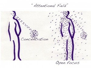Open focus vs concentrated attentional field
